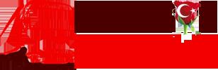 Birgül nakliyat-logo